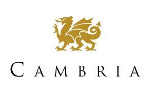 Cambria countertop   Barrett Floors