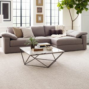 Living room carpet floor | Barrett Floors