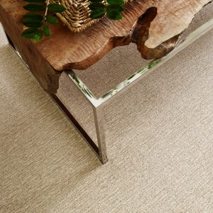 Carpet Flooring   Barrett Floors