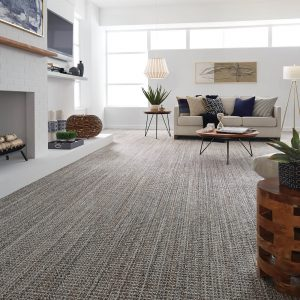 Sundance Jura grey carpet flooring | Barrett Floors